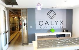 calyx 1